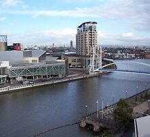 View over the Manchester Ship Canal by susanmcm