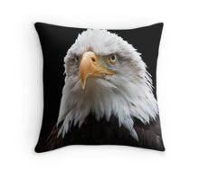 Bald Eagle portrait at the Hawk Conservancy Throw Pillow