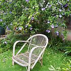 Chair in garden by susanmcm