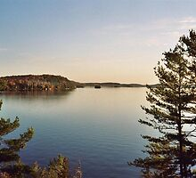 Muskoka afternoon by Ray Vaughan