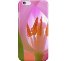 Tulips Macro iPhone Case/Skin