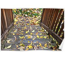 fallen leaves on the steps Poster