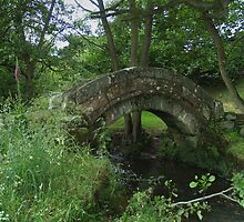 Old Pack-Horse Bridge 2 by WatscapePhoto