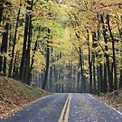 Fall in West Virginia by thorn