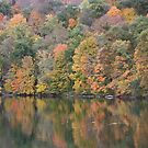 Cheat Lake, WV by thorn