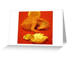 Welcome Junior Greeting Card