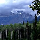Mt. Robson Park (1) by Jann Ashworth