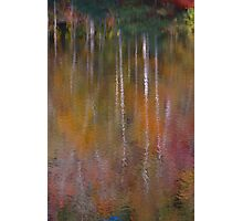the lure of fall Photographic Print