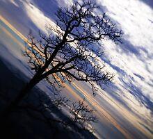 Lensbaby Landscape in the Smokies by Jennifer Hardman