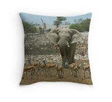 Elephant Scatters Springbuck - Namibia Throw Pillow