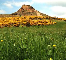 Roseberry Topping by dougie1page2