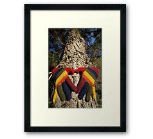 Gloved Hands Hugging a Tree Framed Print