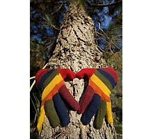 Gloved Hands Hugging a Tree Photographic Print