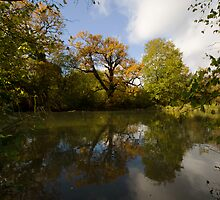 Autumn by the Lake by Nigel Bangert
