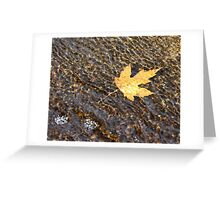 Fallen........... Greeting Card