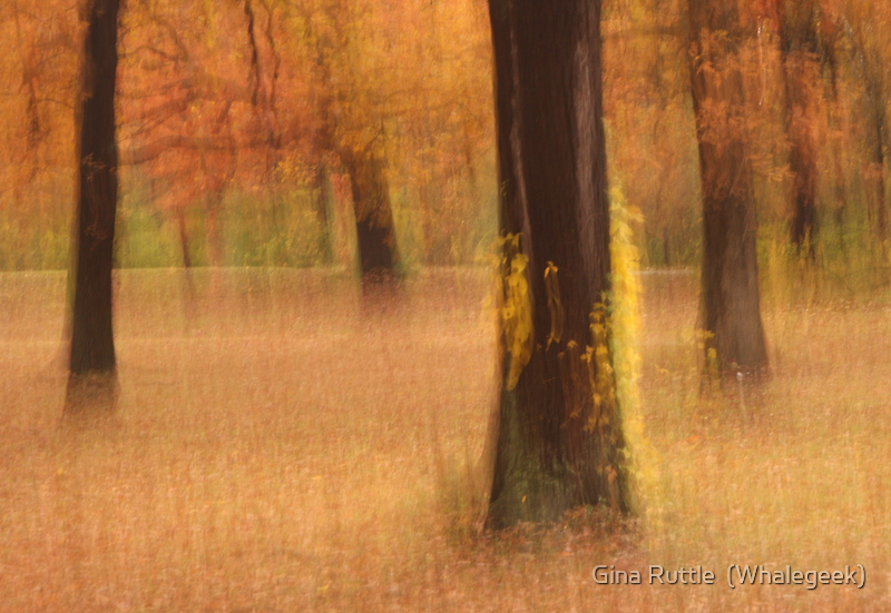 Autumnal Oak Grove by Gina Ruttle  (Whalegeek)