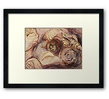 Shell Collage Framed Print
