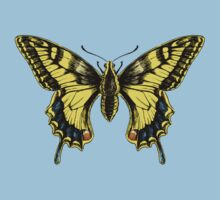 Swallowtail by Stephanie Smith