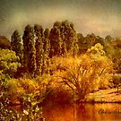By the Lake by Chris Armytage™
