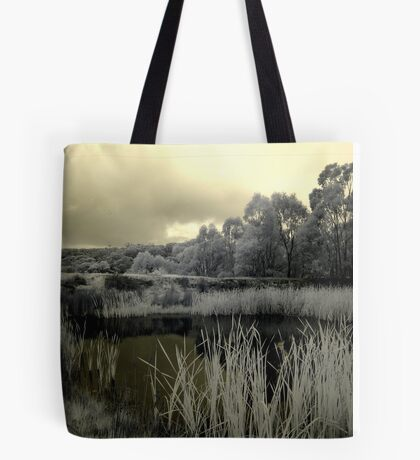 Back to Steiglitz - the darkIR mIRe does inspIRe Tote Bag