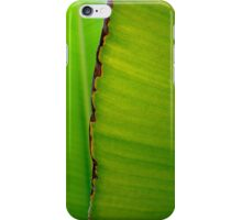 Banana Leaf in Abstract 0525 iPhone Case/Skin