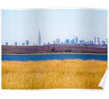 The Skyline Poster