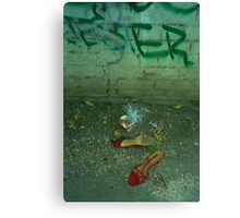 jester and the red shoes Canvas Print