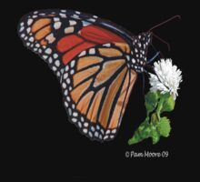 Monarch Butterfly Tee by Pam Moore