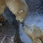Polar Bear Love by PawsOfLove