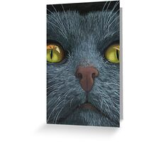 Cat Visions - cat portrait oil painting  Greeting Card