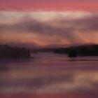 Misty Morning by McTavish
