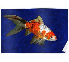 Shebumkin Fish Poster