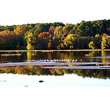 Autumn on the Lake... Photographic Print