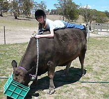 Our great friend Brown cow passed away yesterday at 15 years of age by Alex Gardiner