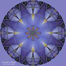 Iris by Dayonda