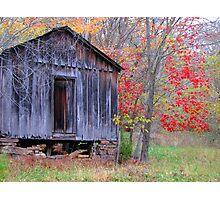 Passing Of  Seasons Photographic Print
