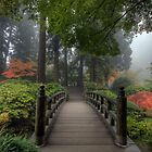 The Bridge in Portland Japanese Garden by davidgnsx1