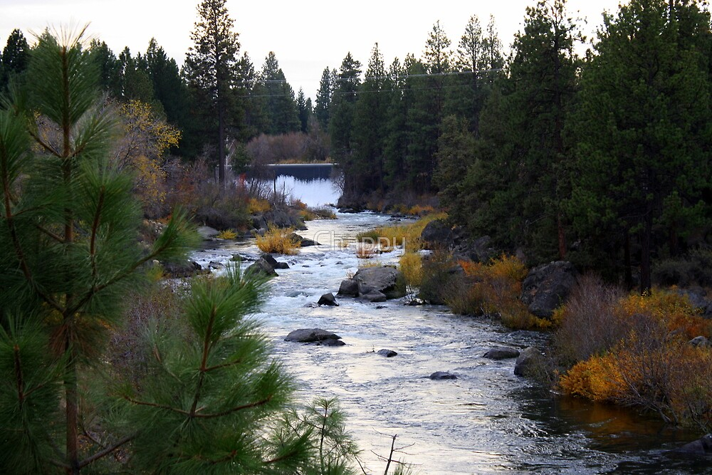 Deschutes River by Chappy