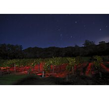 Midnight in the Garden of Good and Evil Photographic Print