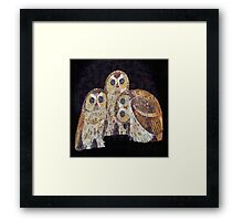 Three Owls - Art Nouveau Inspired by Klimt Framed Print