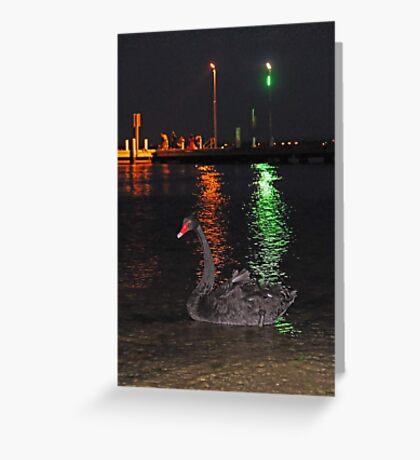 Black Swan At Night  Greeting Card