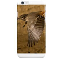 Namib Bird in Flight iPhone Case/Skin