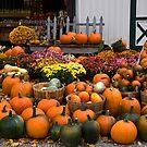 Pumpkin Time by Kathy Weaver