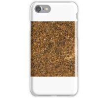 Horned Adder iPhone Case/Skin