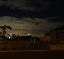 Quiet Suburb at Night by Joan Wild