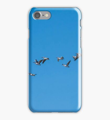 A Squadron of Pelicans iPhone Case/Skin