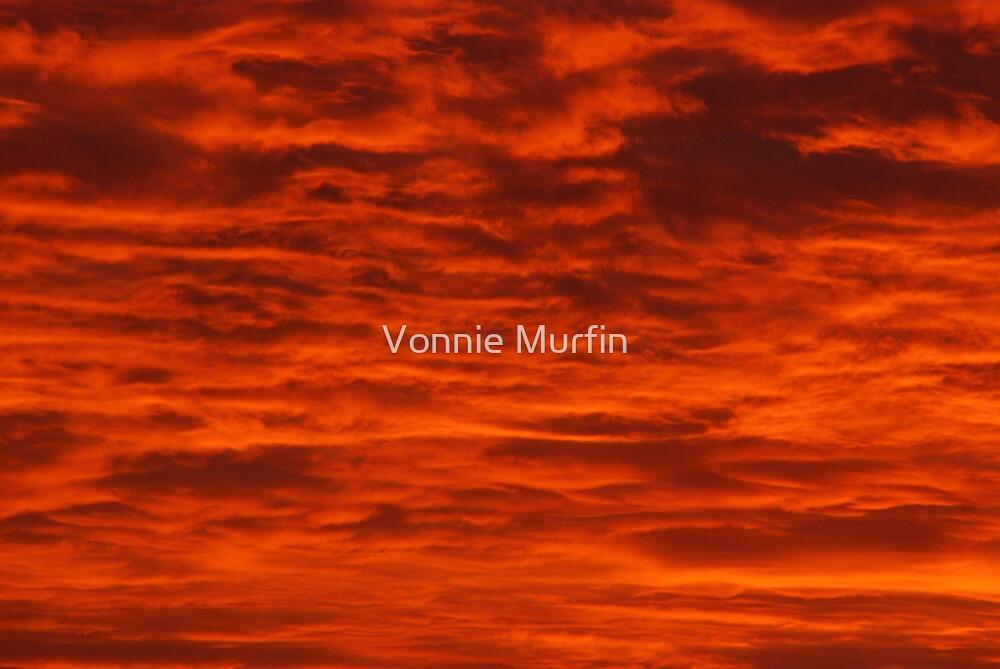 Fire in the Sky! by Vonnie Murfin