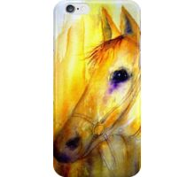 Spirit & Fire iPhone Case/Skin