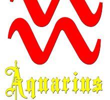 Aquarius, January 20 - February 18 by Adrian Bud