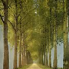 Endless... by LarsvandeGoor